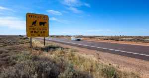 Travelling Australia with a solar car and item